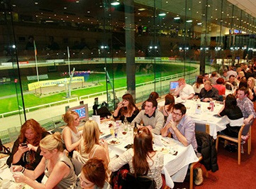 Shelbourne Park Greyhound Racing, Dublin Ireland