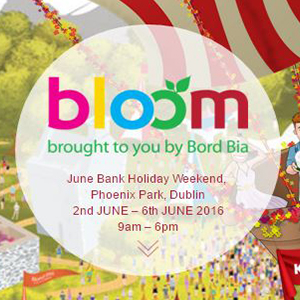 Bloom 2016 Festival at Phoenix Park Dublin Ireland