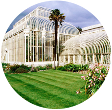Looking for things to do in Dublin - National Botanic Gardens - Dublin events